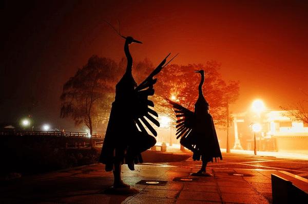 京都発祥の重要無形文化財!津和野の鷺舞