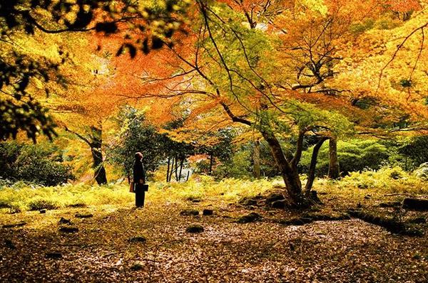 島根の秋は楽し♪