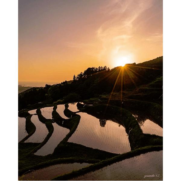 日本海に沈む夕日に映える!室谷の棚田