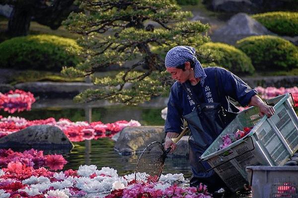 奇跡の絶景!「由志園」池泉に浮かぶ三万輪の牡丹